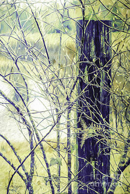 Photograph - Old Fence Post by Jean OKeeffe Macro Abundance Art