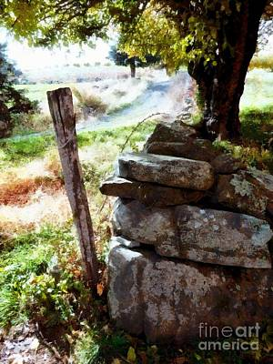 Photograph - Old Fence Post Orchard by Janine Riley