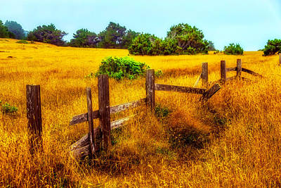 Old Fence Photograph - Old Fence Summer Pastures by Garry Gay