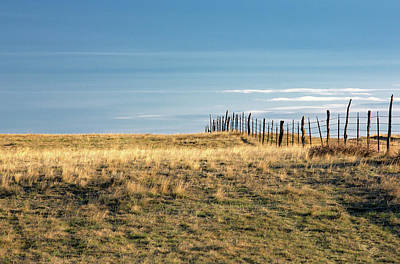 Barbed Wire Fences Photograph - Old Fence by Todd Klassy