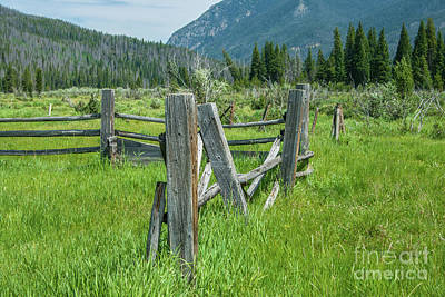 Photograph - Old Fence by Tony Baca