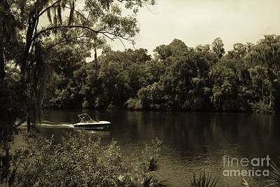 Old Florida Art Print by Marilyn Carlyle Greiner