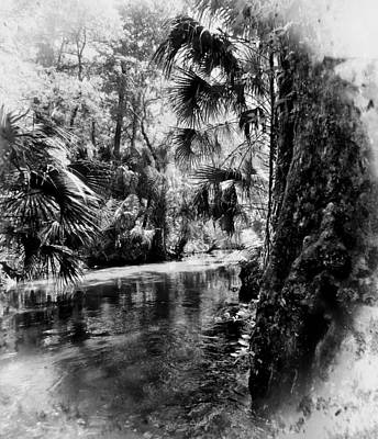Photograph - Old Florida Springs by Sheri McLeroy