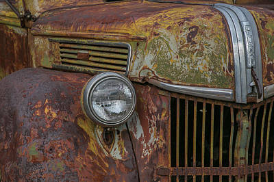 Wall Art - Photograph - Old Ford, Grill by Diana Marcoux