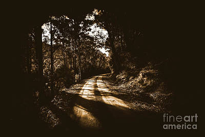 Gravel Road Photograph - Old Forest Road by Jorgo Photography - Wall Art Gallery