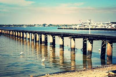 Photograph - Old Fort Myers Pier With Ibises by Carol Groenen