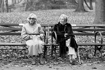 Whimsically Poetic Photographs - Old Friends by Dave Beckerman