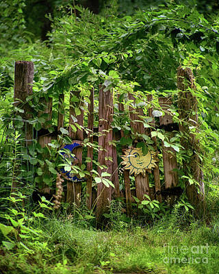 Photograph - Old Garden Gate by Mark Miller