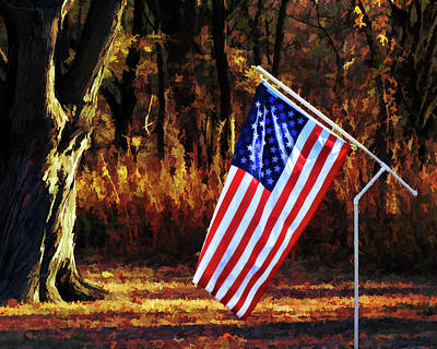 Photograph - Old Glory  by Ann Powell