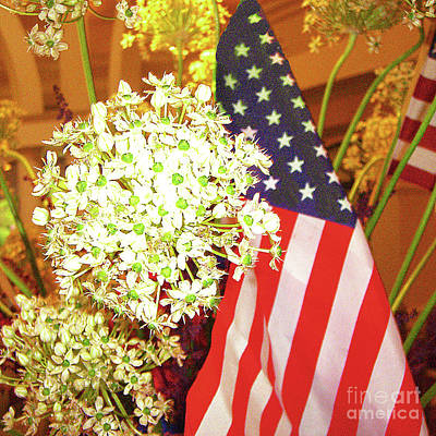 Photograph - Old Glory - Flowers Bursting In Air by Merton Allen