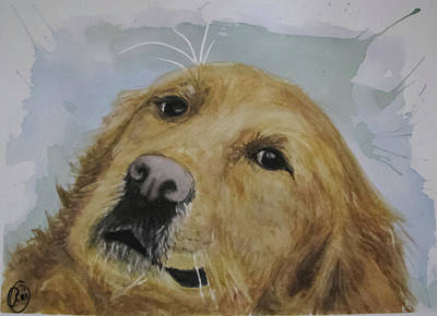 Painting - Old Golden Retriver by Annie Poitras