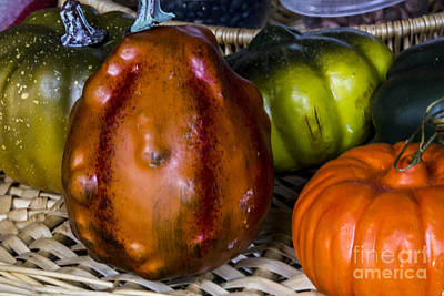 Digital Art - Old Goto Food Squash  by Georgianne Giese