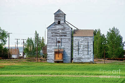 Photograph - Old Grain Elevator by David Arment