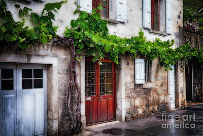 Grapevine Photograph - Old Grapevine On A Winery Building by George Oze
