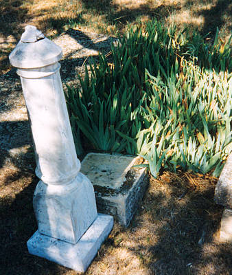 Stone Grave Iris Headstone Cementery Photograph - Old Grave Site by Cindy New