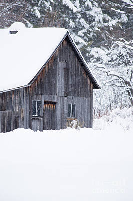 Photograph - Old Gray Barn In The Snow Etna New Hampshire by Edward Fielding