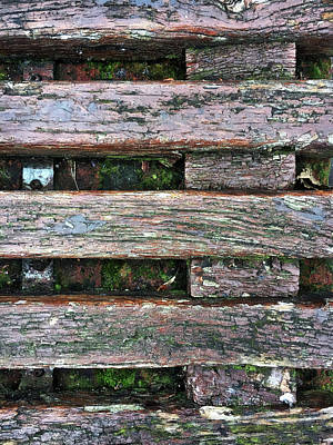 Old Plank Tables Photograph - Old Grungy Wood Planks by Tom Gowanlock