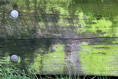 Photograph - Old Guardrail by Karen Adams