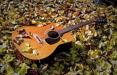 Photograph - Old Guitar But Not Willie Nelson's Trigger by Bill Swartwout