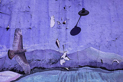 Old Hawk Mural Art Print by Garry Gay