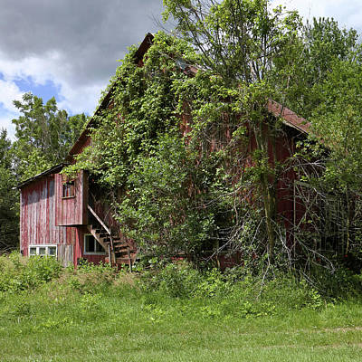 Photograph - Old Herb Barn by Scott Kingery