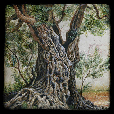 Painting - Old Holy Land Olive Tree Trunk by Miki Karni