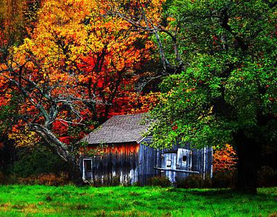 Old Homestead And The Apple Tree Art Print by Vicki Lea Eggen
