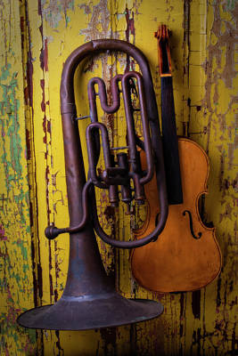 Old Horn And Violin Art Print by Garry Gay
