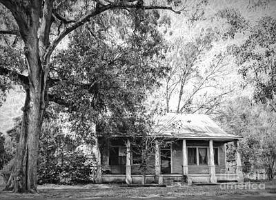 Old House And Tree Donaldsonville La Art Art Print