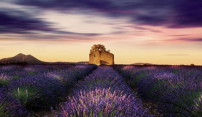 Photograph - Old House by Jorge Maia