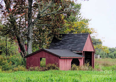 Photograph - Old Ice House Hollis Nh  by Janice Drew