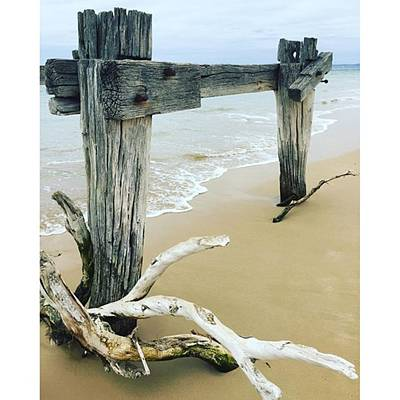 Photograph - Old Jetty Point Nepean Victoria March by Paul Dal Sasso