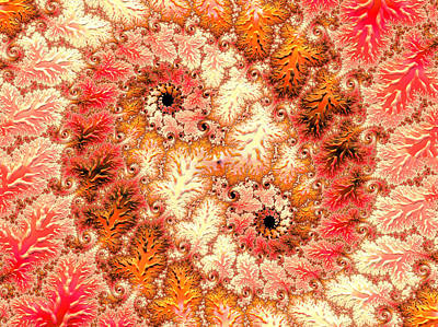 Orange Digital Art - Old Lace by Georgiana Romanovna