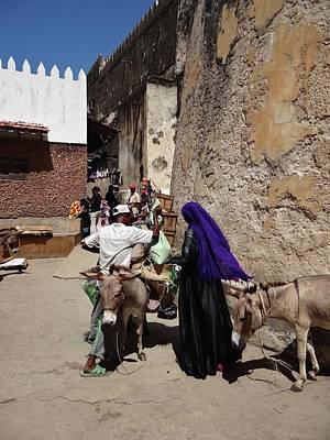 Exploramum Photograph - Old Lamu Town by Exploramum Exploramum