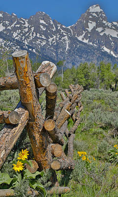 Photograph - Old Log Fence Grand Teton National Park by Dan Sproul