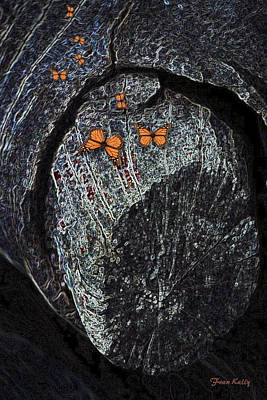 Photograph - Old Log With Butterflies by Fran Kelly