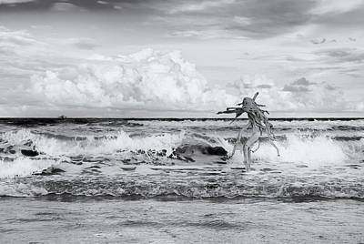 Photograph - Old Man In The Sea by Carolyn Dalessandro