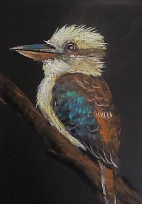 Painting - Old Man Kookaburra by Anne Gardner