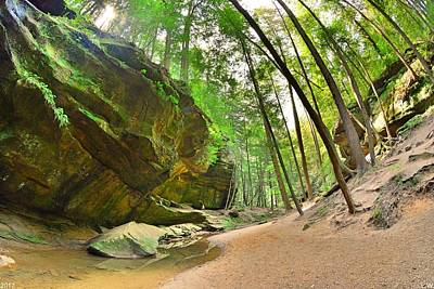 Photograph - Old Man's Gorge Trail Hocking Hills Ohio 2  by Lisa Wooten
