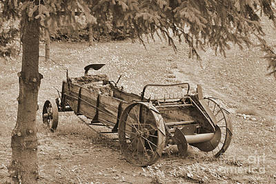 Photograph - Old Manure Spreader In Sepia by Ansel Price