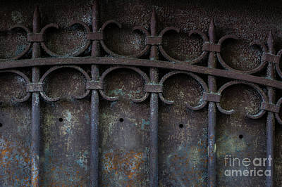 Antique Ironwork Photograph - Old Metal Gate by Elena Elisseeva