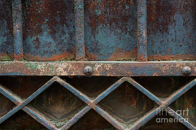 Antique Ironwork Photograph - Old Metal Gate Detail by Elena Elisseeva