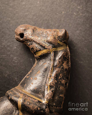 Photograph - Old Metal Horse Toy by Edward Fielding