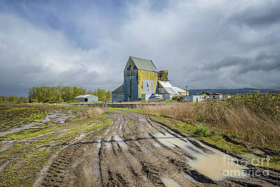 Photograph - Old Mill by Craig Leaper