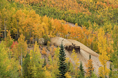 Photograph - Old Mine Among The Aspens by Loree Johnson