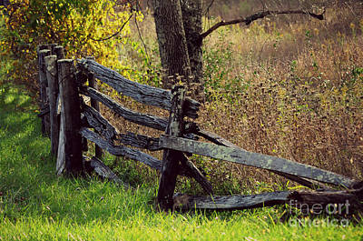 Photograph - Old Moss Back Fence by Eric Liller