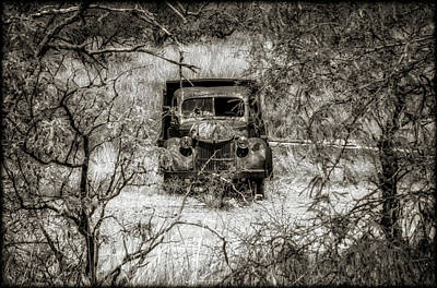 Photograph - Old N Forgotten by Elaine Malott