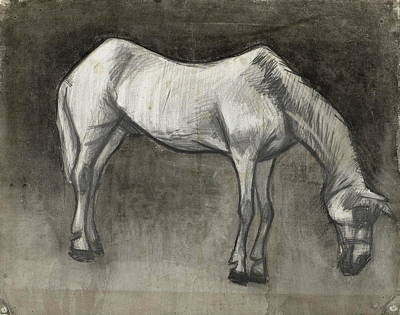 Race Horse Painting - Old Nag, 1883 by Vincent Van Gogh