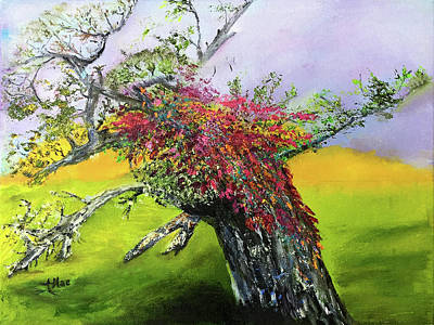 Painting - Old Nantucket Tree by Terry R MacDonald