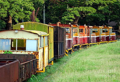 Photograph - Old Narrow Gauge Diesel Train by Yali Shi
